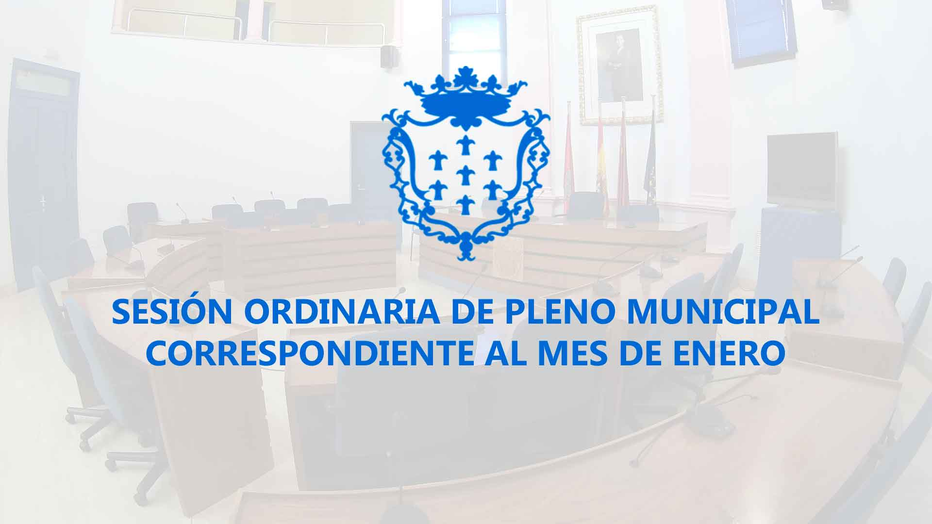 Pleno Ordinario de Enero 2016